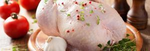 Основні поради щодо вибору курятини